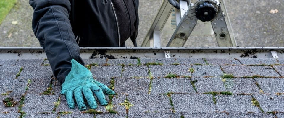 Buying a New Home? Why Roof Inspections Are Important